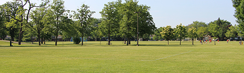 Facility and Field Conditions