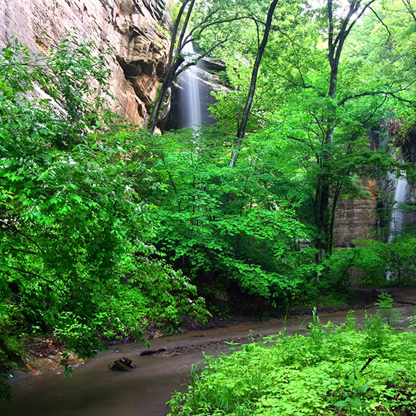 Starved Rock Waterfall & Canyon Trip - CANCELLED
