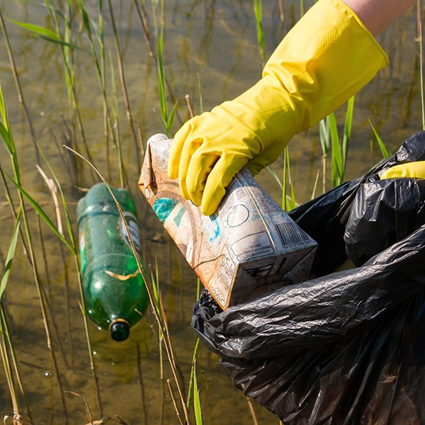 Des Plaines River Clean Up