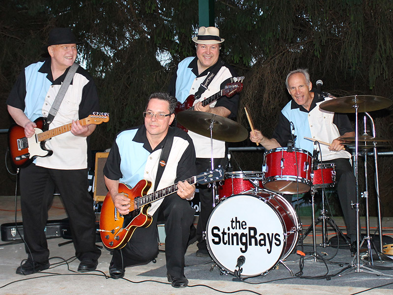 Concert at South Park - The Stingrays